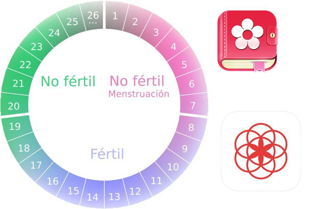 Aplicacion Calendario Menstrual.Descargar Calendario Menstrual Para Pc
